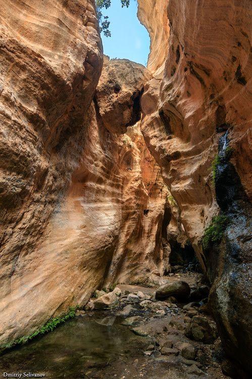 Ущелье Авакас Путешествие и Отдых на севере Кипра Avakas ...