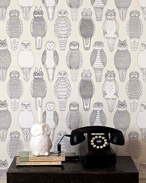 excellent funky wallpaper for house. Owls  awesome wallpaper designs from Abigail Edwards Wall to
