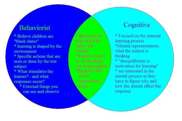 Behaviorist vs constructivist