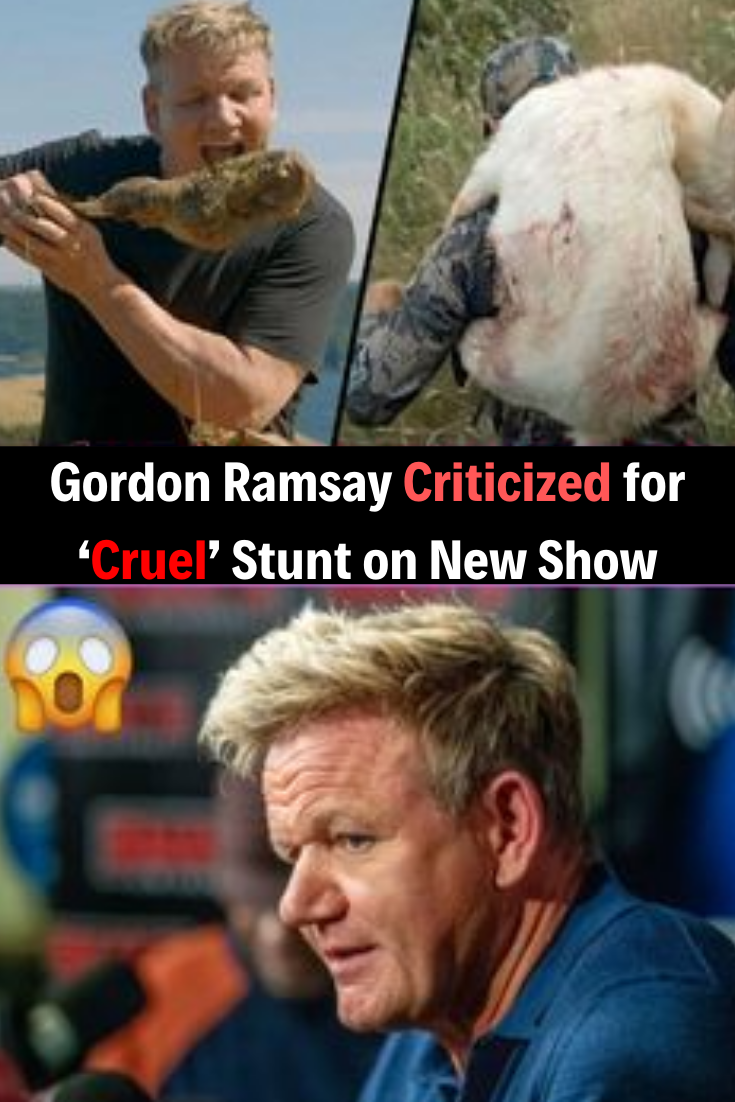 Gordon Ramsay Criticized For Cruel Stunt On New Show New Shows Funny Moments Humor