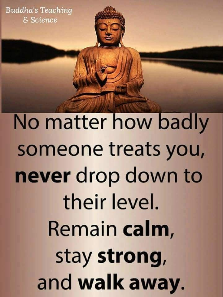 Pin By Akia Williams On New Beginnings Quotes Buddha Quote
