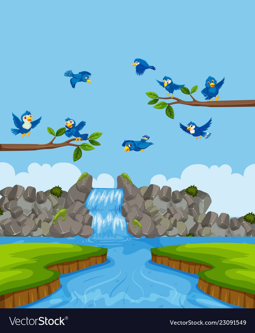 Birds in nature landscape vector image on VectorStock