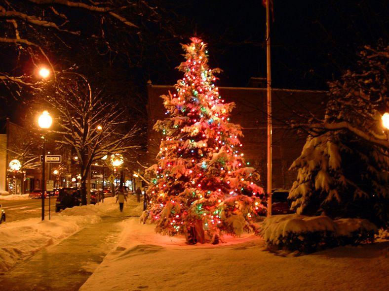 Winter Memories Fall Christmas Tree Glens Falls Christmas Tree