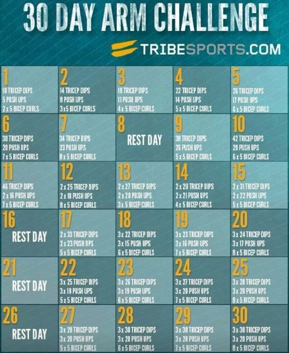 30 Day Arm Challenge – Fit Bitch