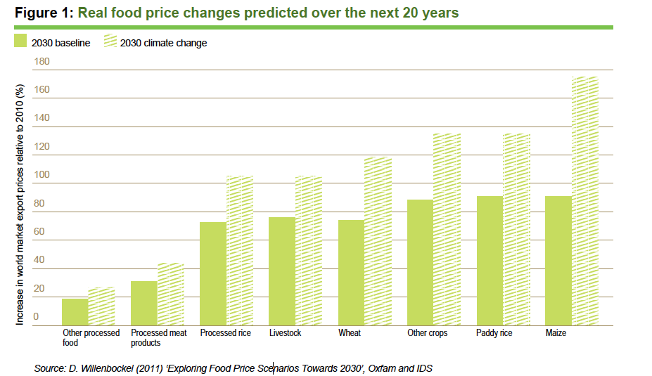 """Real Food Price Changes Predicted over the Next 20 Years  Climate change will make food expensive.  Source: D. Willenbockel (2011) """"Exploring Food Price Scenarios Towards 2030"""", Oxfam and IDS"""
