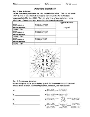 Mutations Worksheet Dna