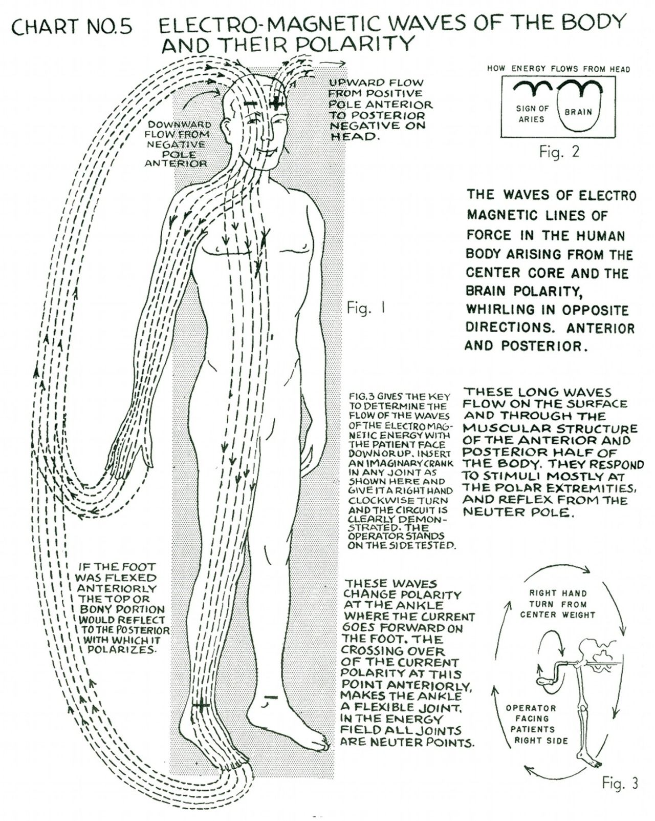 Our Pathway to the Truth • lucifelle: Polarity Therapy Charts 1-10 ...