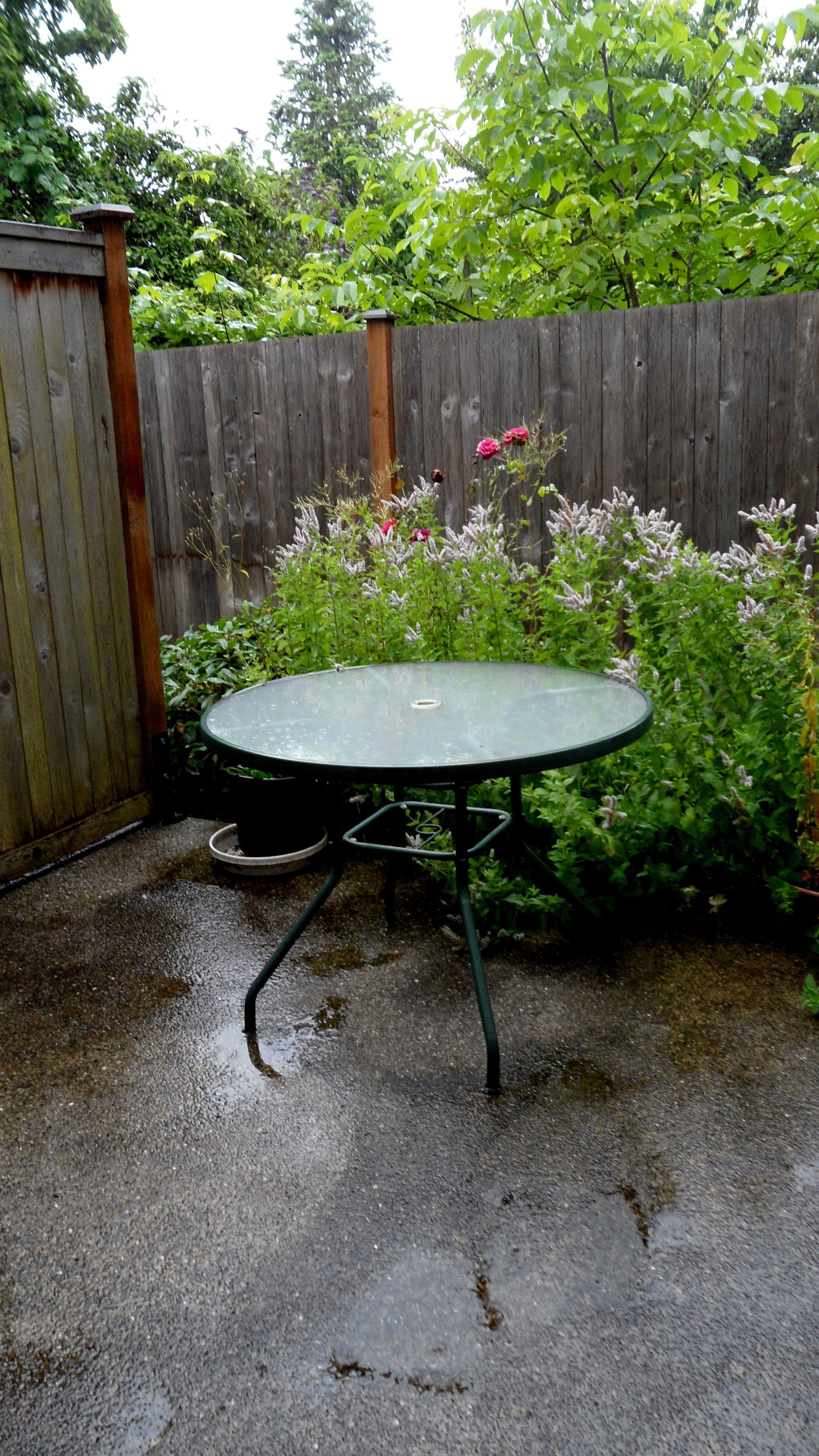 Smell of rain.   Smell of rain, Bird bath, Outdoor decor