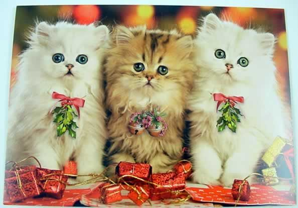 christmas cats - Google Search