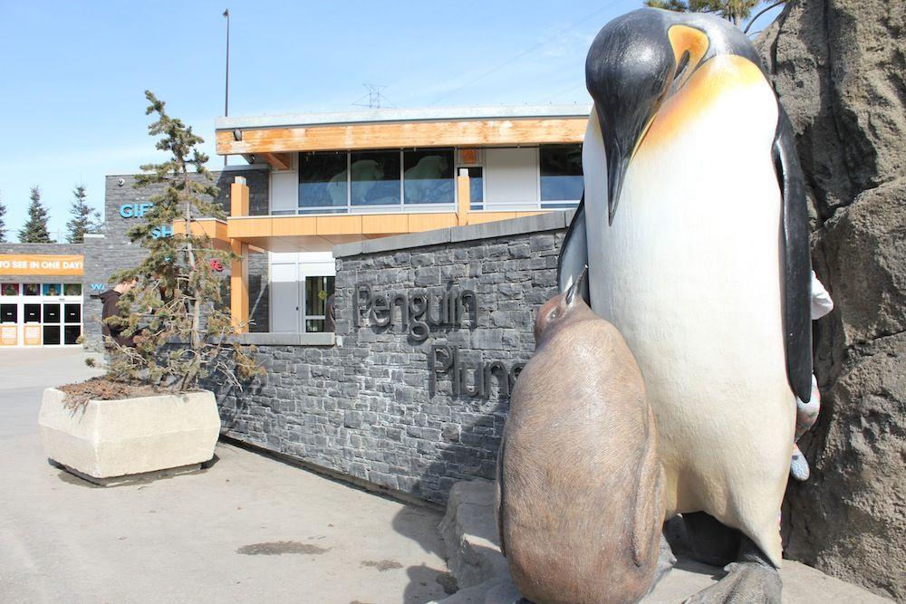 The Story Of The Calgary Zoo S Statues Zoo Statue Calgary