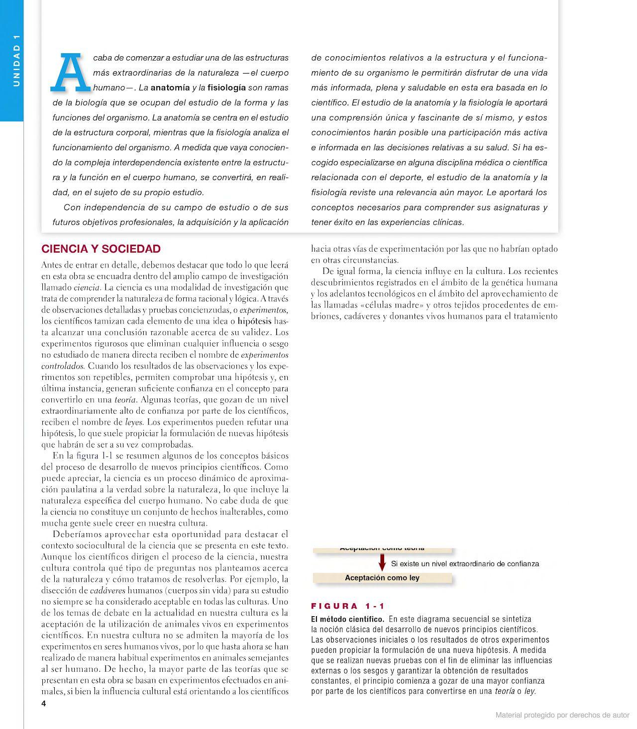 Anatomía y fisiología | anatomia | Pinterest | Fisiología y Anatomía