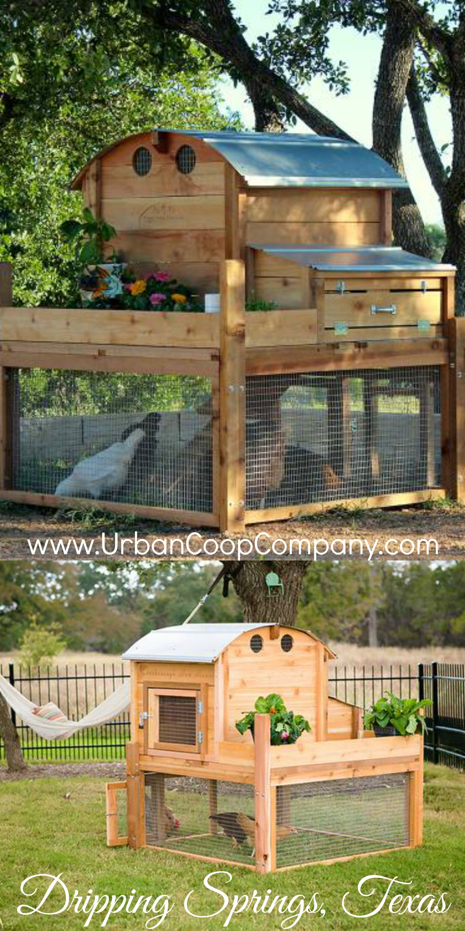 CHICKEN COOPS | Urban Coop Company | La Beℓℓe ℳystère ...