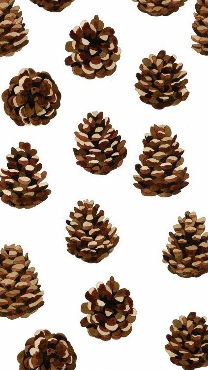 Illustrated pine cones phone wallpaper iphone background for Pinecone wallpaper