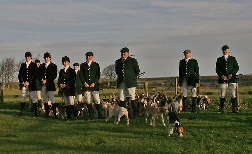 Beagling Hare Hunting On Foot Equestrian Life Equestrian Style