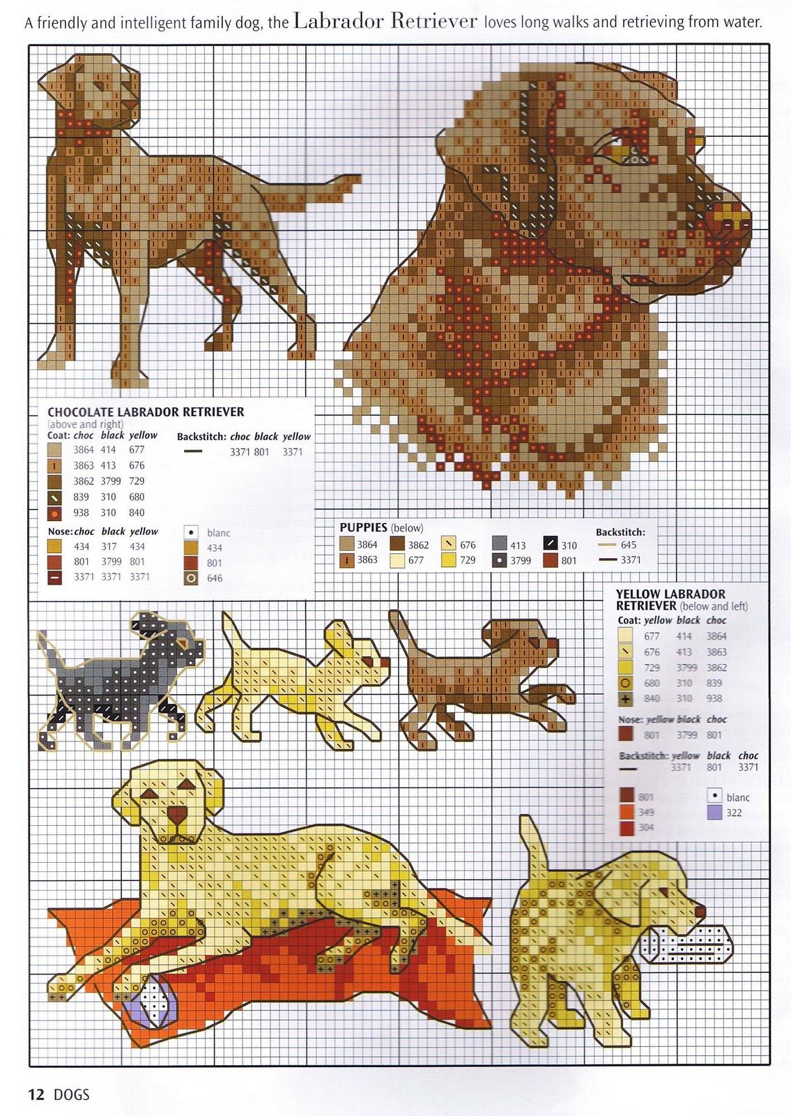 Chocolate lab cross stitch | вышивка и фенечки | Pinterest | Hunde ...