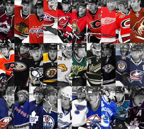 Every Team Every Color Hockey Baby Hockey Pictures Hockey Stick