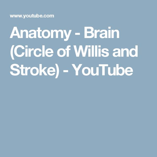 Anatomy Brain Circle Of Willis And Stroke Youtube