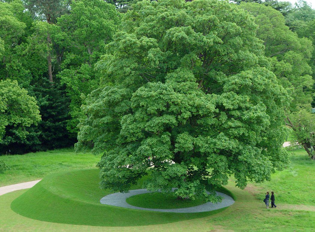 Limelight meyer silberberg landscape architecture 02 for Garden design gloucestershire