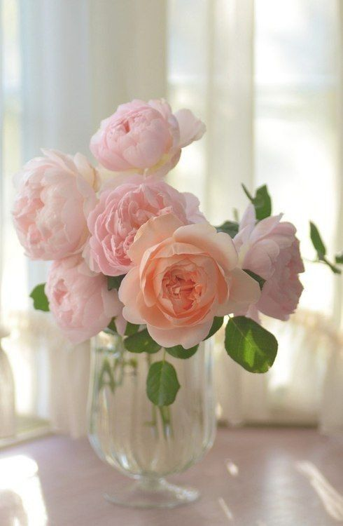 Flowers, Flower arrangements