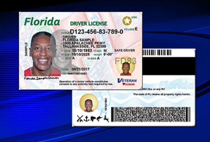 Florida New Drivers Licenses 072517 Drivers License New Drivers Florida