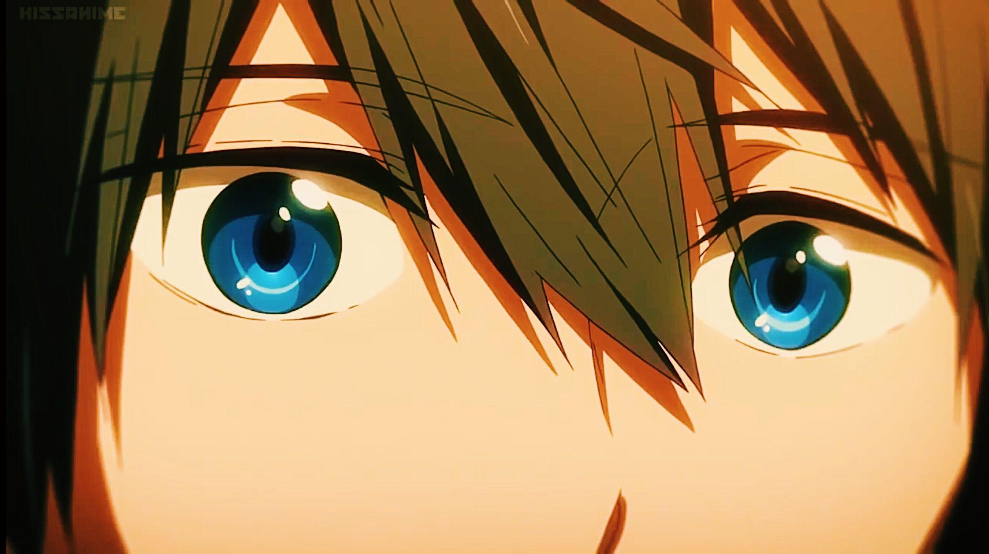 Free! Iwatobi Swim Club 8/'/' Makoto Plush Anime Manga NEW
