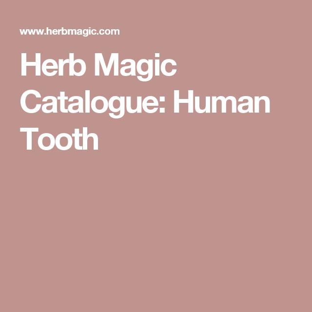 Herb Magic Catalogue: Human Tooth | something new | Human