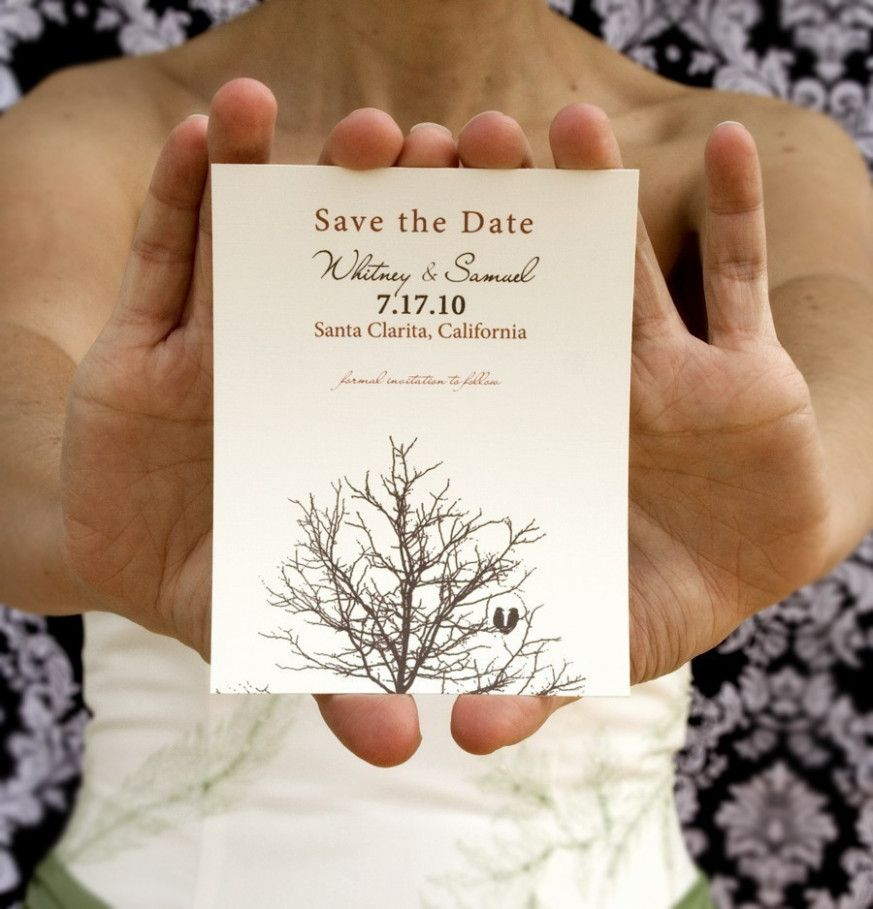Intimate Wedding Invitation Wording: Small Wedding Invites Save The Date
