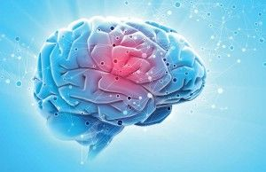 7 Ways to Promote a Healthy Brain Advice from a White House Conference on Aging webinar