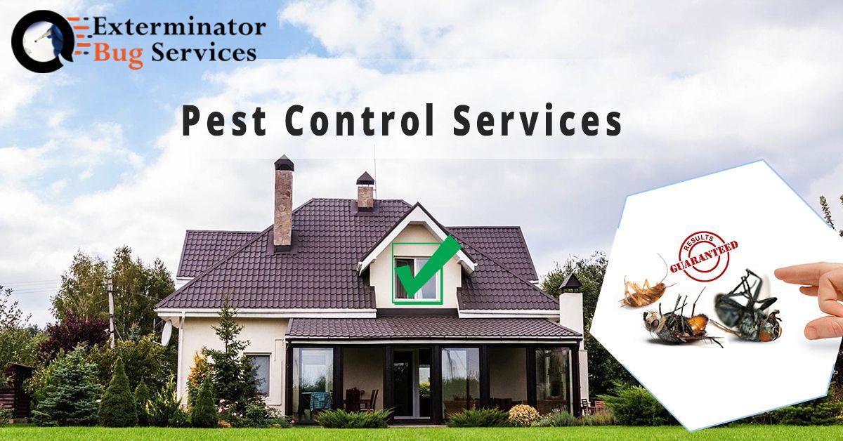 Pest Control Service Pest control services, Pest control