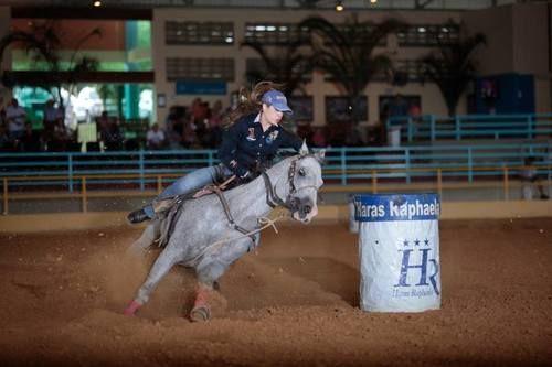 Cutter Exocet Lee  (Exocet Nez Perce x Miss Gay Cutter GG)  2000 Gray ApHC Stallion