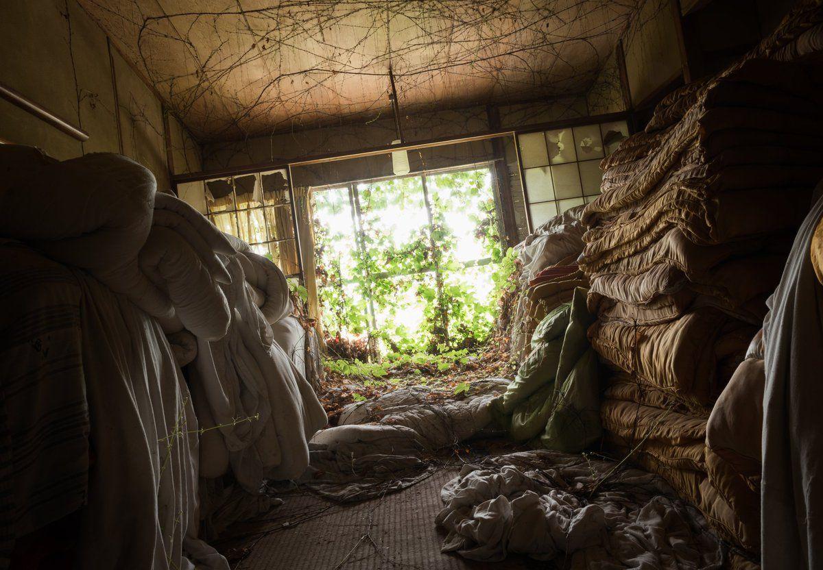 """廃ゆりりぃ@學展/秋DFさんのツイート: """"緑と廃墟 https://t.co/36ejcfNXkz"""""""