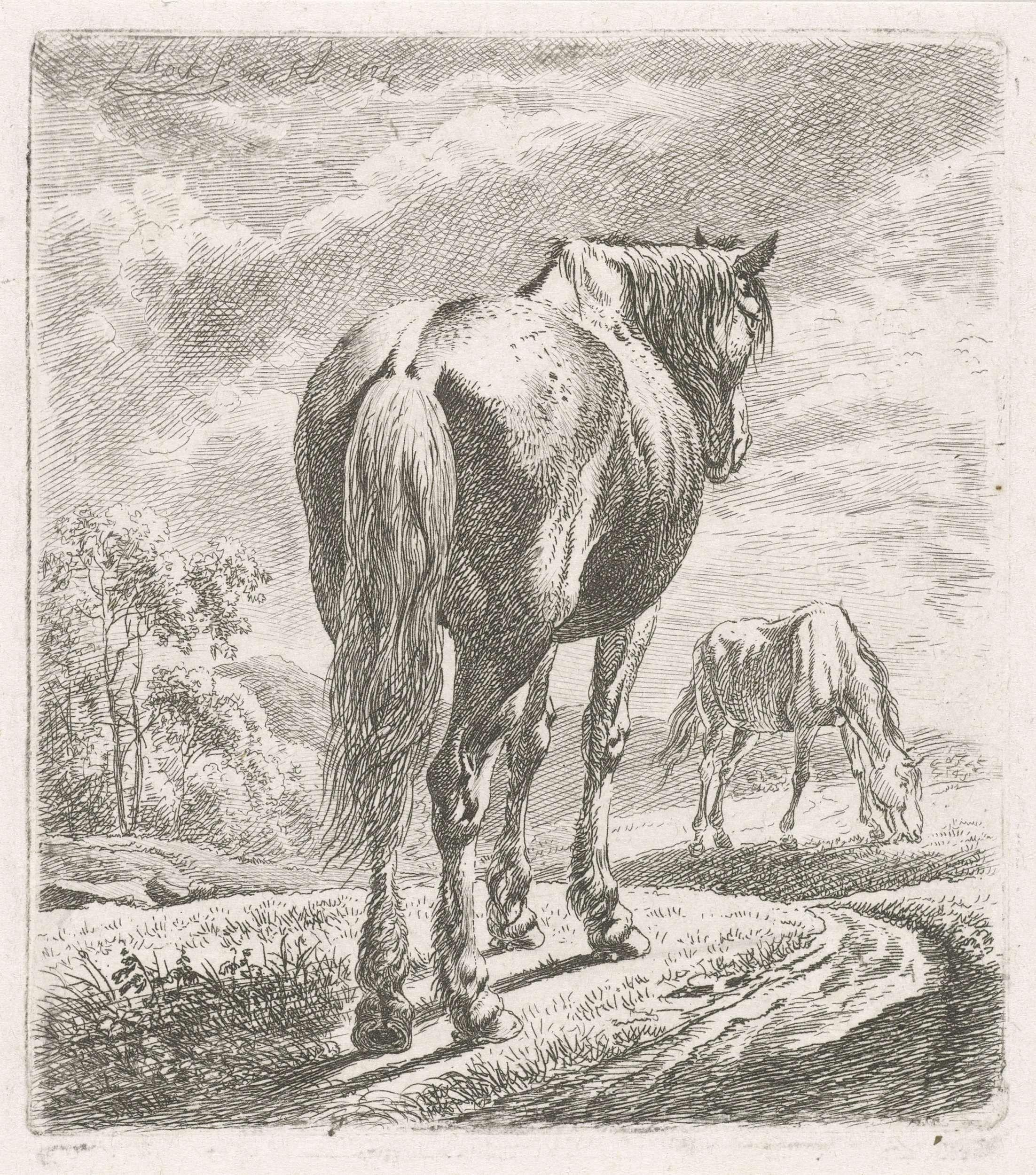Johannes Mock | Paard van achteren gezien, Johannes Mock, 1824 | Een paard schuin van achteren gezien. Op de achtergrond een grazend paard.