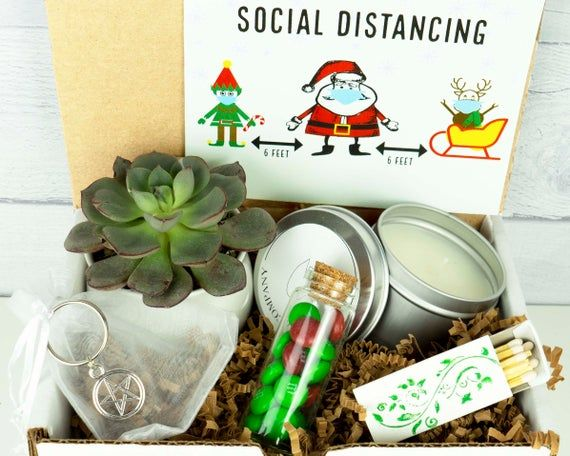 SOCIAL DISTANCE CHRISTMAS. Holiday Gift Box. Christmas. Holiday Care Package. Live Succulent. Succul