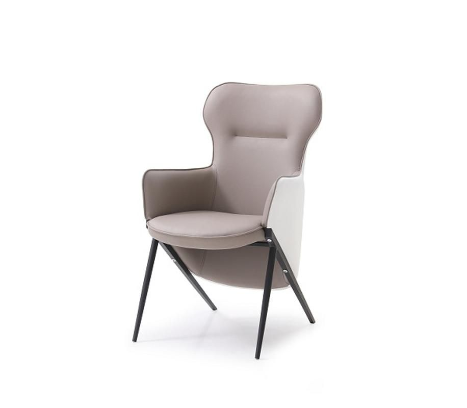 Miraculous Vig Furniture Modrest Coreen Modern White Brown Bonded Squirreltailoven Fun Painted Chair Ideas Images Squirreltailovenorg