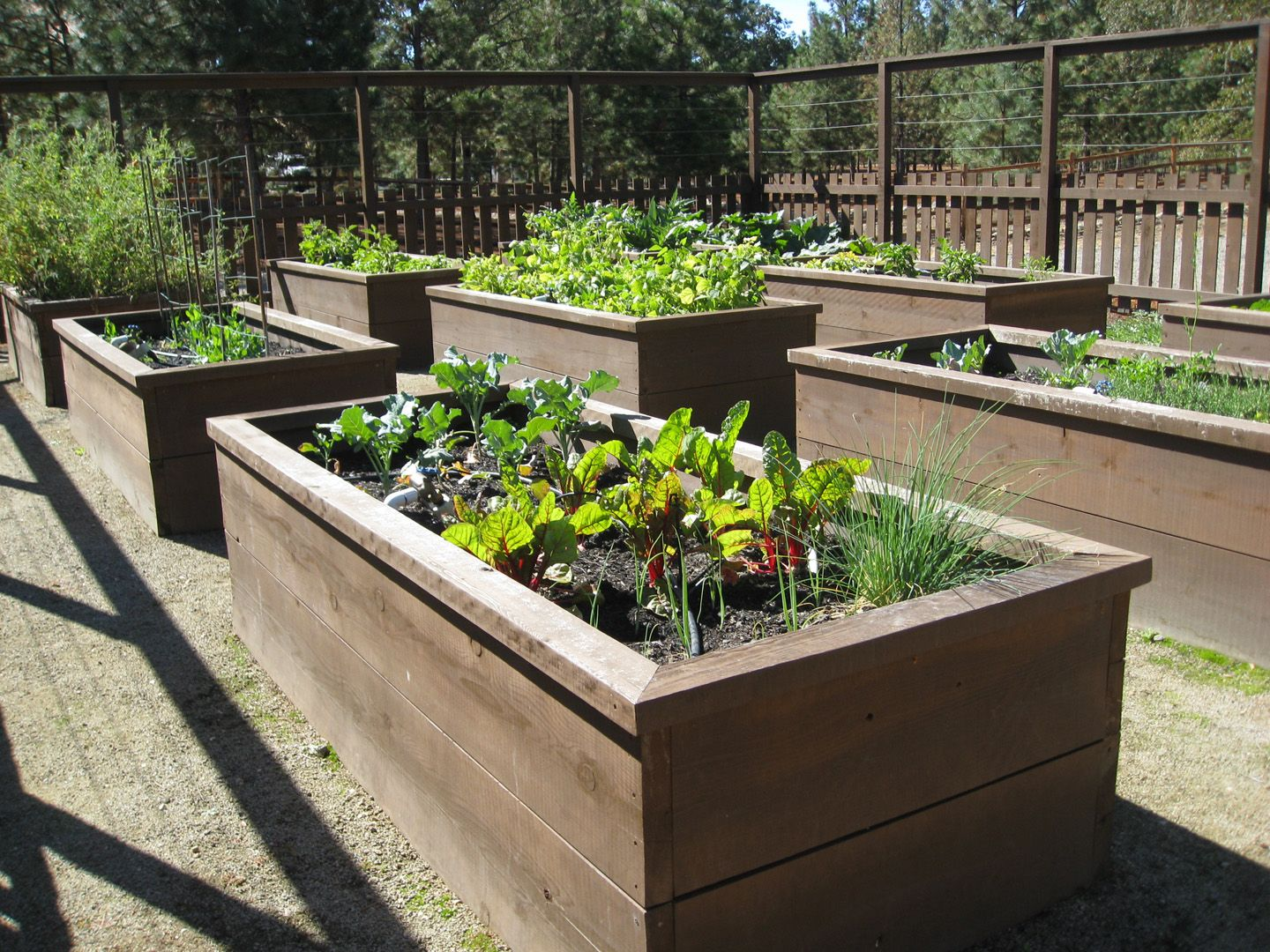 Raised garden beds on pinterest raised garden beds for Garden designs with raised beds