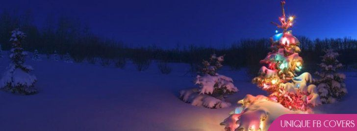 Christmas Tree Fb Cover Photo Facebook Cover Christmas Desktop Wallpaper Christmas Desktop Beautiful Christmas Trees
