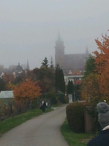 Novembernebel in Weil der Stadt 2015