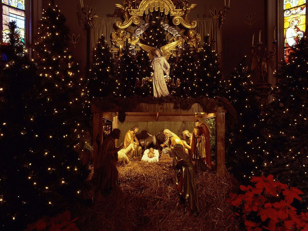 #Christmas #Holly #Place.