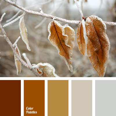 Brown Color Matching Gray Gray Brown House Color
