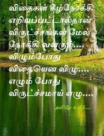 Tamil Kavithai About Nature In 10 Lines Google Search Tamil