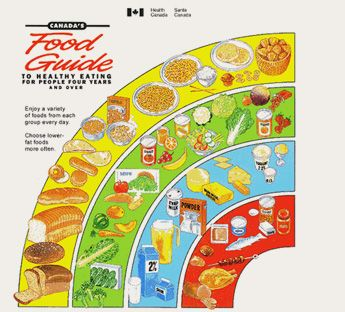Canada S Food Guide Nutritional Tools Deals From Savealoonie