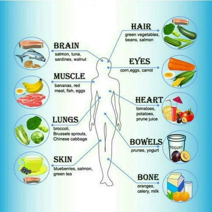 Food for the body