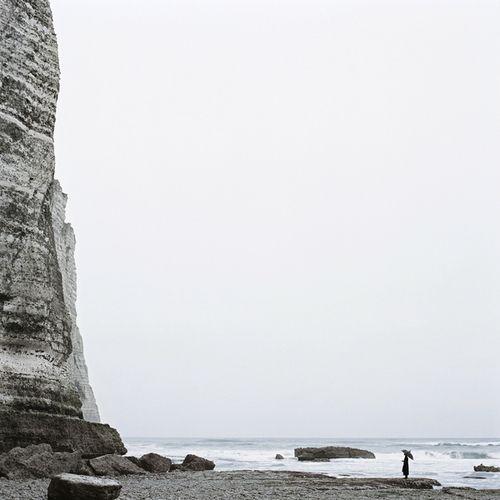 aubade:    Juliette Bates From the Histoires Naturelles series, 2011 [via Free York]