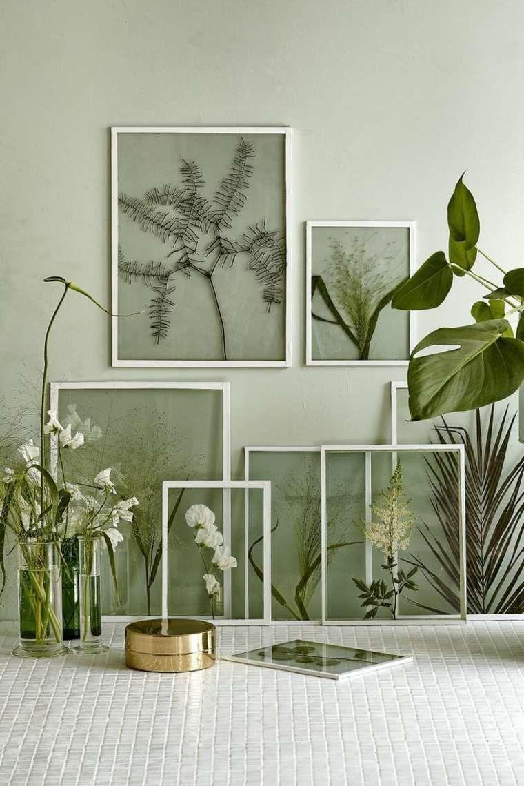 dekorative zimmerpflanzen zimmerpflanzen dekorative ideen zum selbermachen home