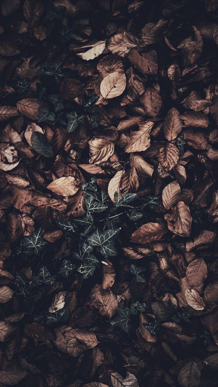 Cliquez ici pour l'image complète!15 Wunderschöne Happy Fall iPhone X Wallpapers - Merve Yıldız - Let's Pin This #falliphonewallpaper