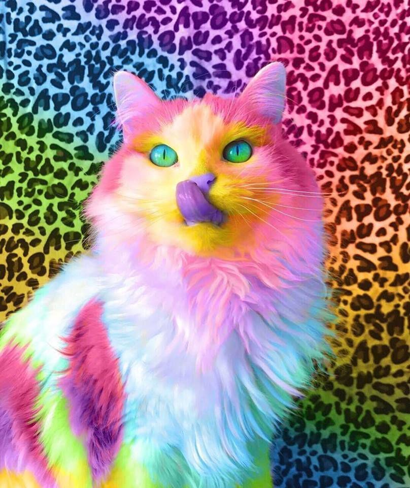 картинки с разноцветными животными собрали для