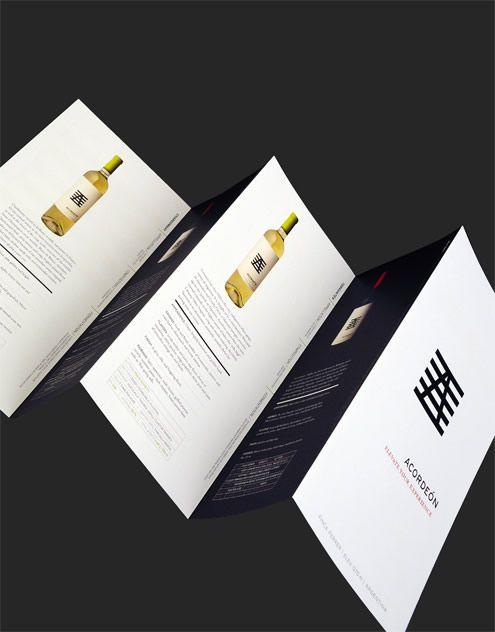 Acordeon Argentina Freixenet Argentina Brochure #wine #branding