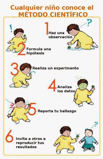 Cualquier Nino Conoce El Metodo Cientifico Pero Que Ocurre A Medida Que Avanza Su Escolarizacion Scientific Method Science Jokes Nerdy Baby