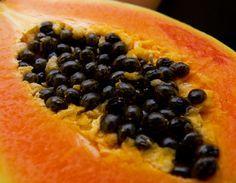 Benefícios das sementes de mamão para a saúde.  Fotografia: Reprodução.