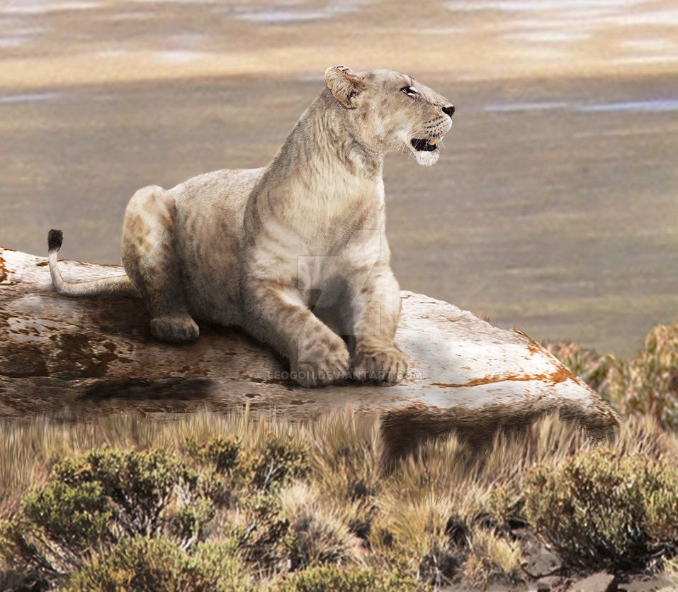 Panthera atrox by Leogon on DeviantArt Prehistoric